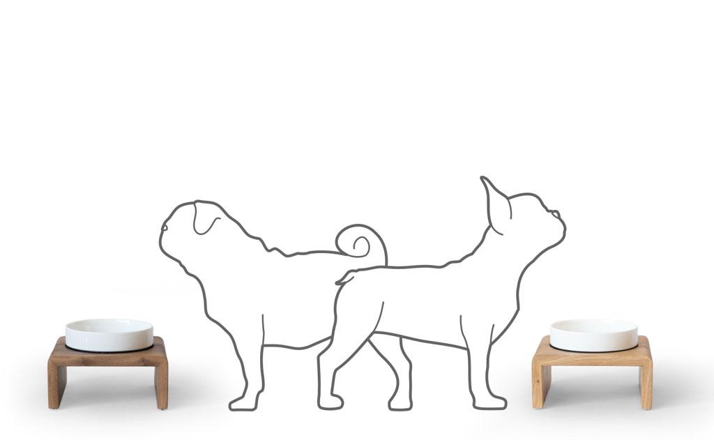 Otto Medium mit einer Französischen Bulldogge und einem Mops